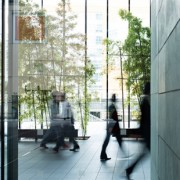 Business Insurance - Professional Insurance -Liability Indemity